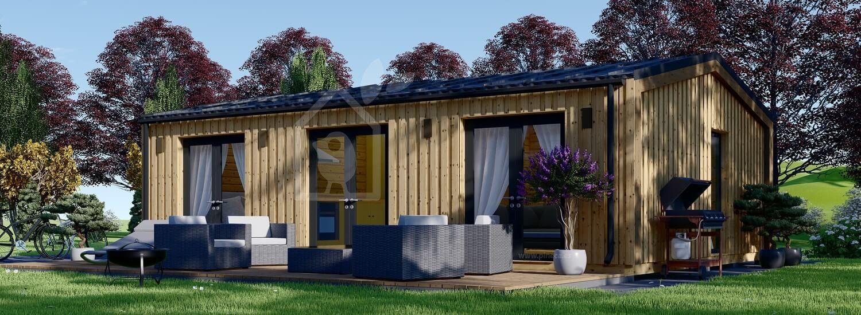 Casa de madera ANGELA (44 mm + revestimiento), 50 m² visualization 1