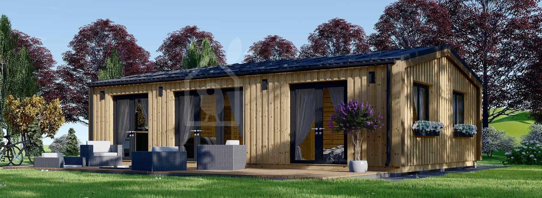 Casa de madera para vivir SELENE (Aislada PLUS, 44 mm + revestimiento), 63 m² visualization 1